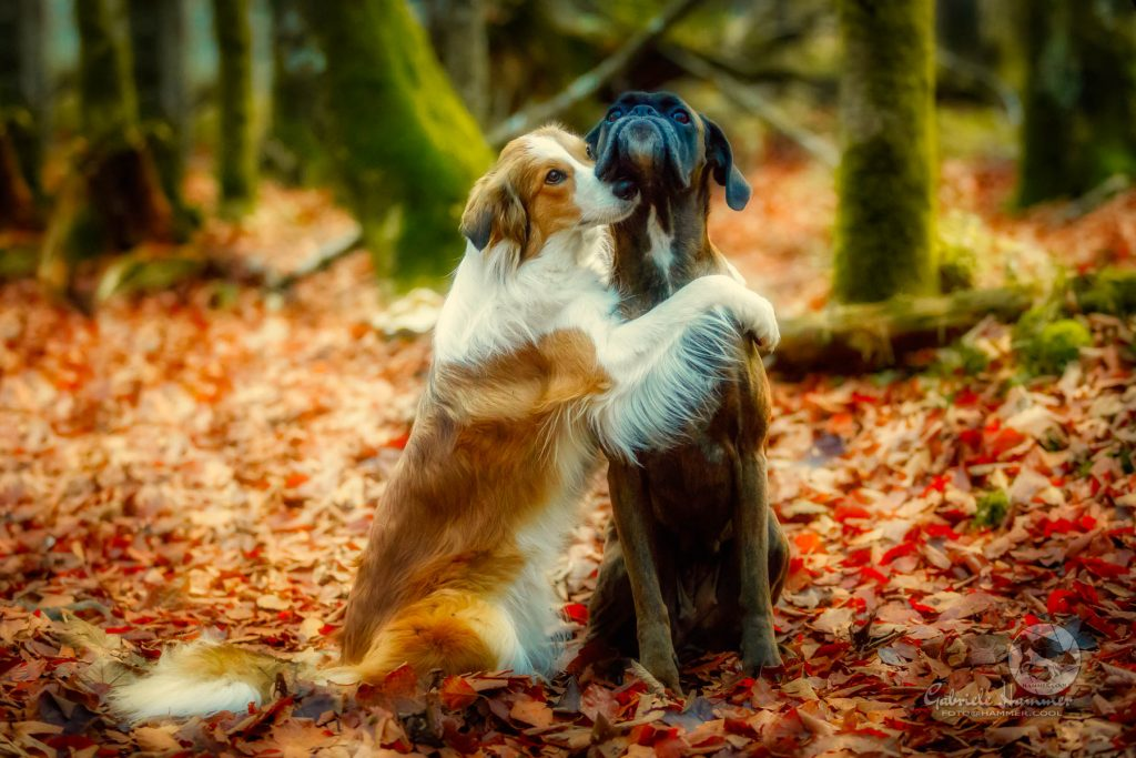 Sunny and Tini in the forest…